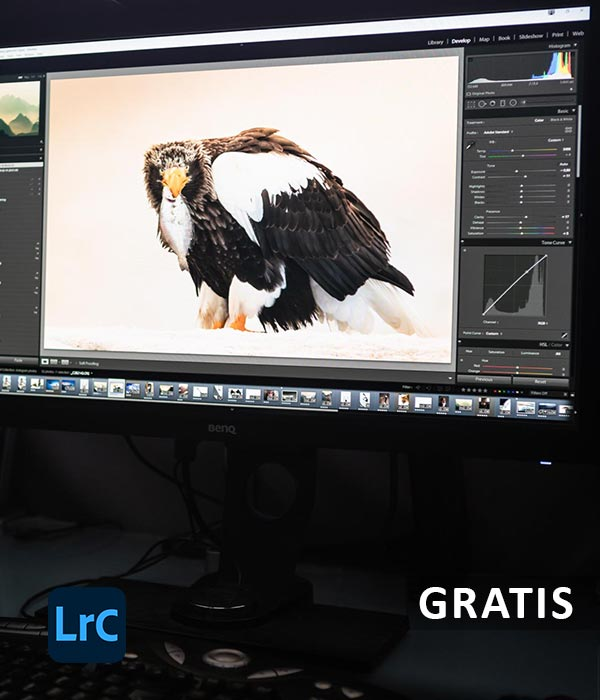 Lightroom Classic grundkurs introduktion